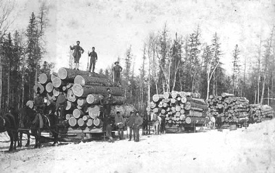 Ponsford_logging_pic