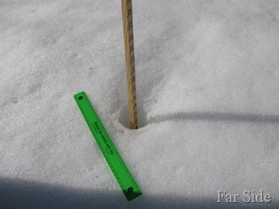 March 15 Snowstick