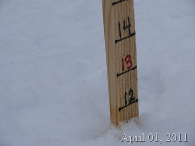 April 01 2011 snow stick