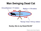 Dead Cat Swinging