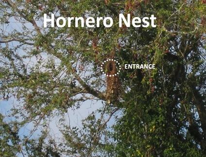 Oven nest