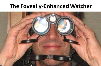 FE Watcher