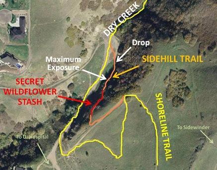 DC Sidehill Map cut
