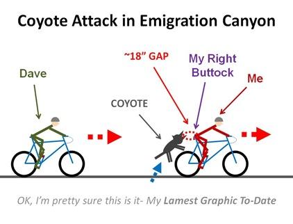 CoyAttack2