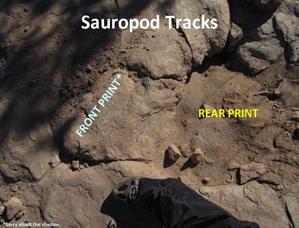 S Tracks Front Rear