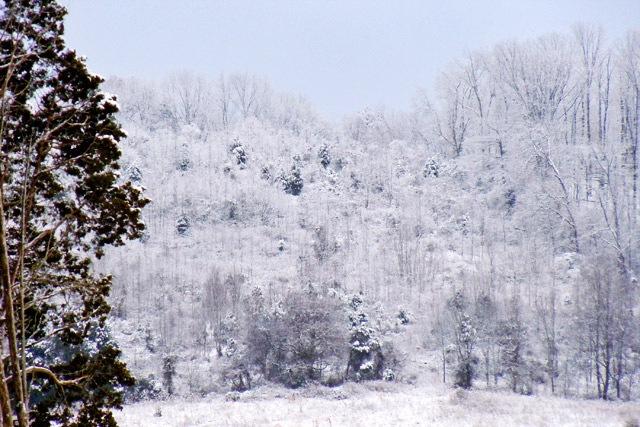 January snow in Hardin Valley