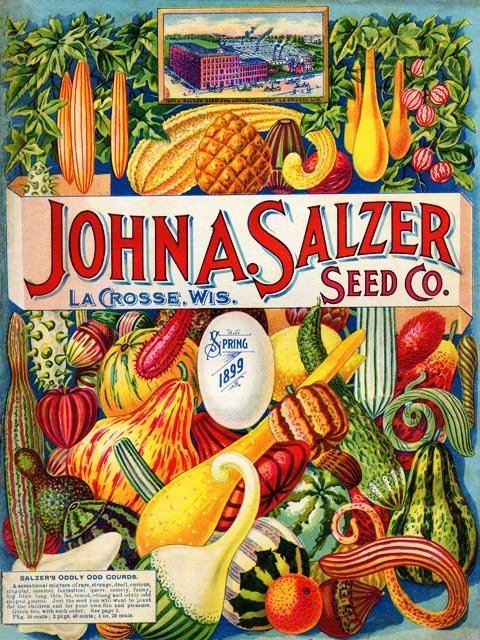 salzer-seed-company