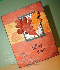 Erin Card 6