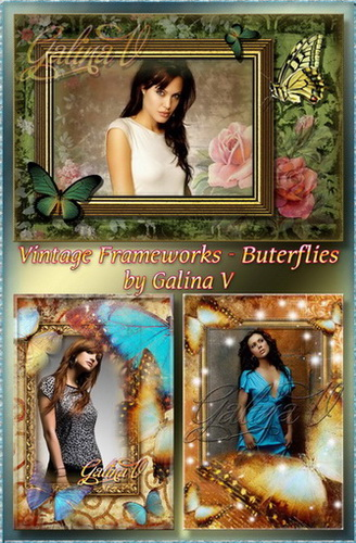 Vintage Frameworks - Butterflies