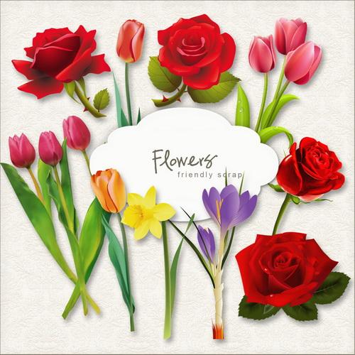Клипарт - Коллекция цветов