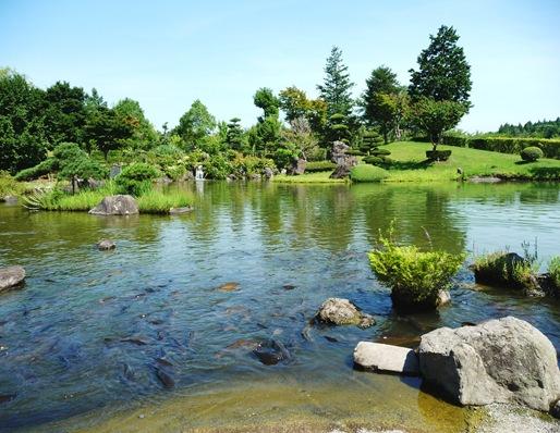 8. ushiku daibutsu lago
