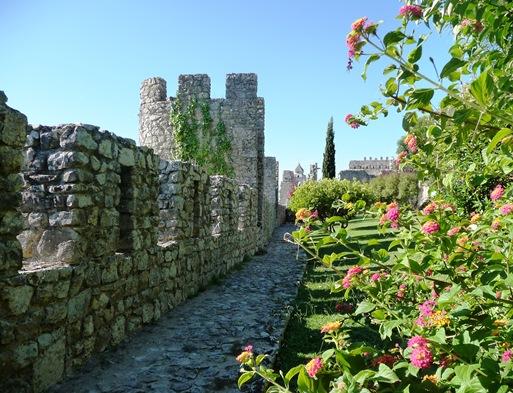 4 - Barbacã envolvente do Castelo de Montemor-o-Velho