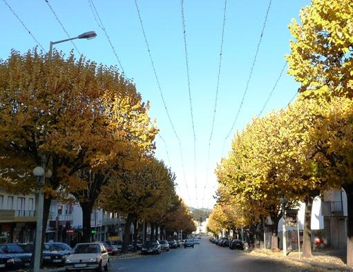 Fundão - avenida