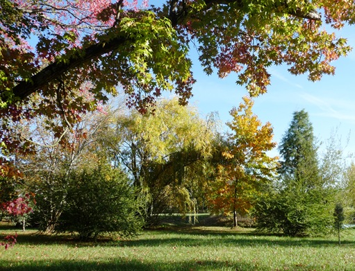 5. Parque municipal - mealhada
