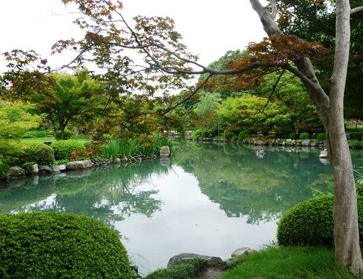 11. templo Toji - jardim - lago