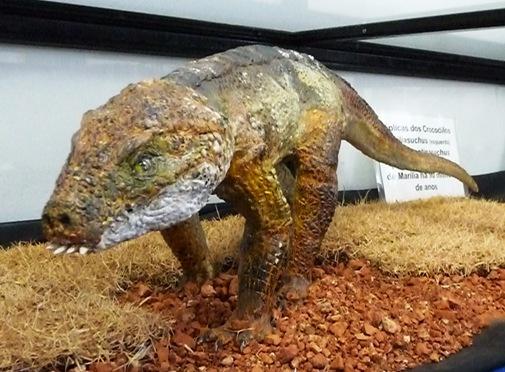 7. réplica do Mariliasuchus