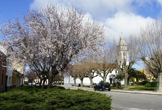 Mira - Portomar - primavera 2