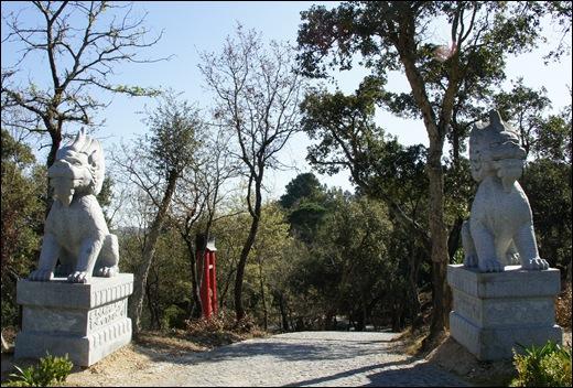 Buddha Eden - entrada da floresta