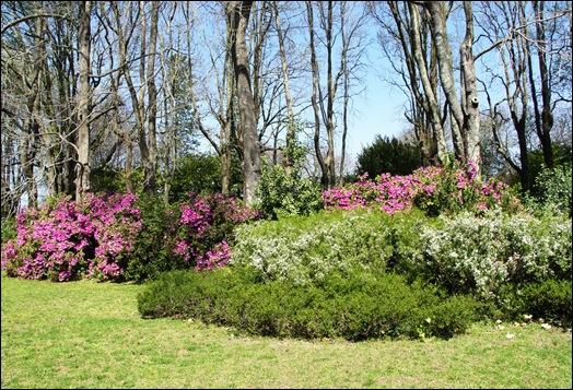 jardim serralves - jardim 1