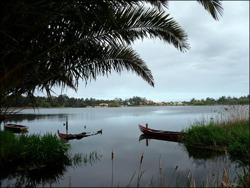 Mira - Lagoa - barco