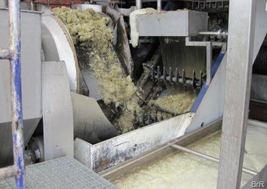 Zuckerrohrmühle