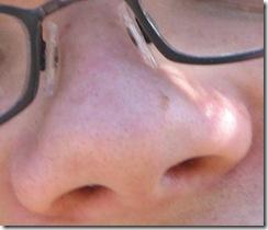 Hidung Besar