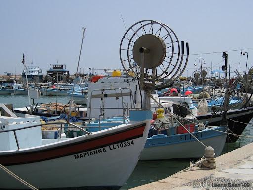 Kypros%202009%20103.JPG