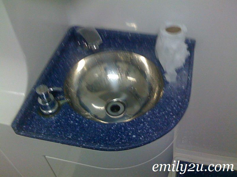 stainless steel toilet on ETS