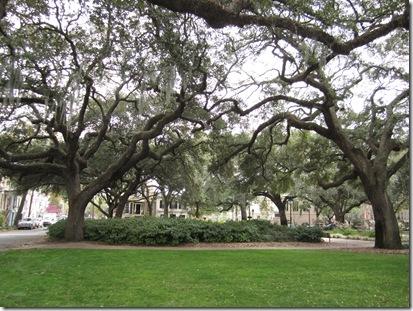 Savannah Trip and More! 124