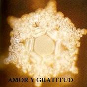 AMOR Y GRATITUD1