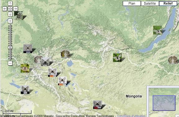 Localisation des photos : Monts Saur (Kazakhstan), Altaï (Kazakhstan, Russie), Mongolie, Lac Baïkal et Bouriatie (Russie)