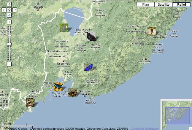 Localisation des expéditions proposées : Sud-Ouest (Luehdorfia puziloi) : Andreevka & Lac Khasan. Sud (Papilio maacki) : les îles près de Vladivostok. Sud (Sephisa princeps) : les îles près de Nakhodka. Centre (Apatura iris) : Livadyiskyi et Vorobei Mts. Centre Nord (Seokia pratti) : Monts Sinyi. Nord-Ouest (Vacciniina optilete) : le Lac Khanka. Nord-Est (Parnassius stubbendorfii) : Dal'negorsk