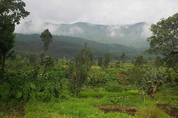 La campagne, juste à l'Ouest de Baisha (2500 m), 19 août 2010. Photo : J.-M. Gayman