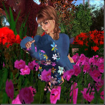 Snapshot blog_003