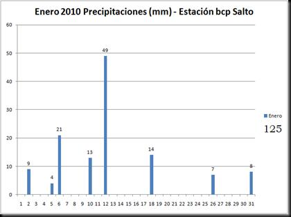 Precipitaciones (Enero 2010)