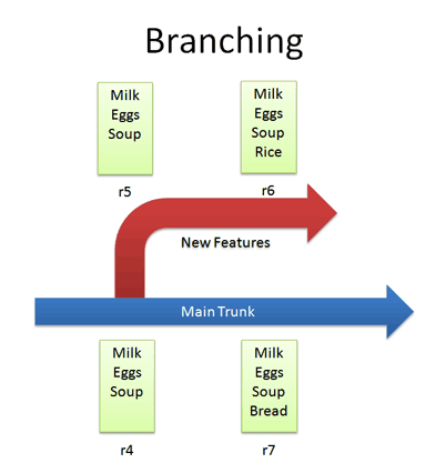 first_branch.png