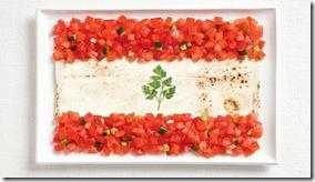 foodflag08