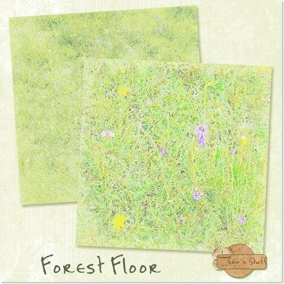jsch_forestfloor_folder