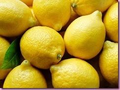 rotator-lemons_476x357