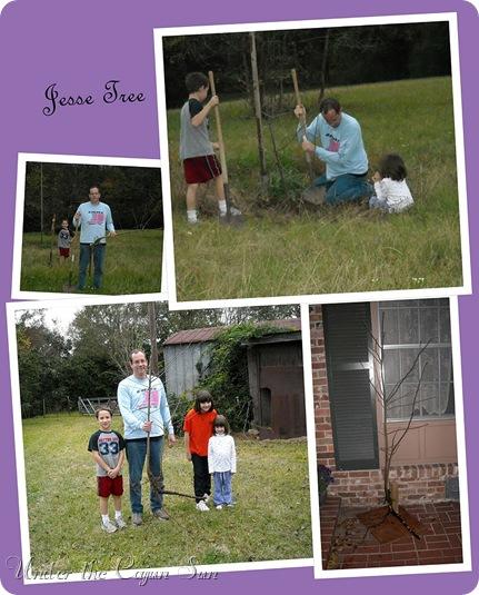 Jesse Tree 2jpg-002