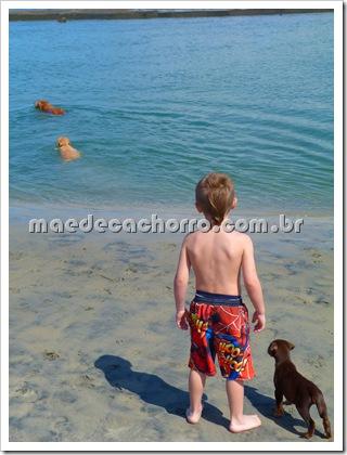 Isso é Dog Beach!!