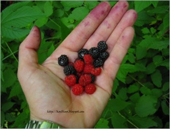 10072001raspberries