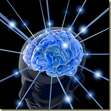 le-cerveau