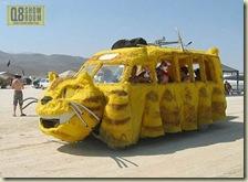 105-cat-car-funny