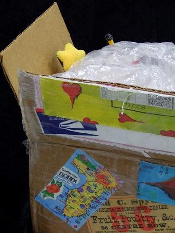 box open 1