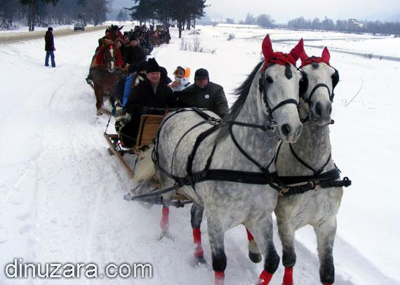 Elena Udrea se plimbă cu sanie pe locul pe unde anul acesta va trece mocăniţa