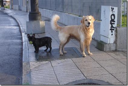 Pepa y Otto