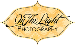 in the light photography logo 6