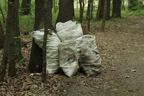 В самом парке тем временем идет массовая уборка - куча комунальщиков(?) собирают мусор