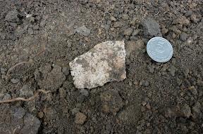 (с) Константин Нетребенко: Найден фрагмент черепа вблизи лагеря.